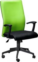 ER 5555 Colour Highback Chair